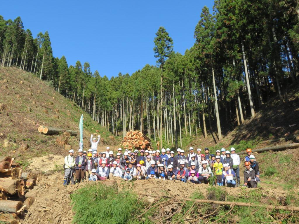 「八溝杉の伐採現場を見に行こう」