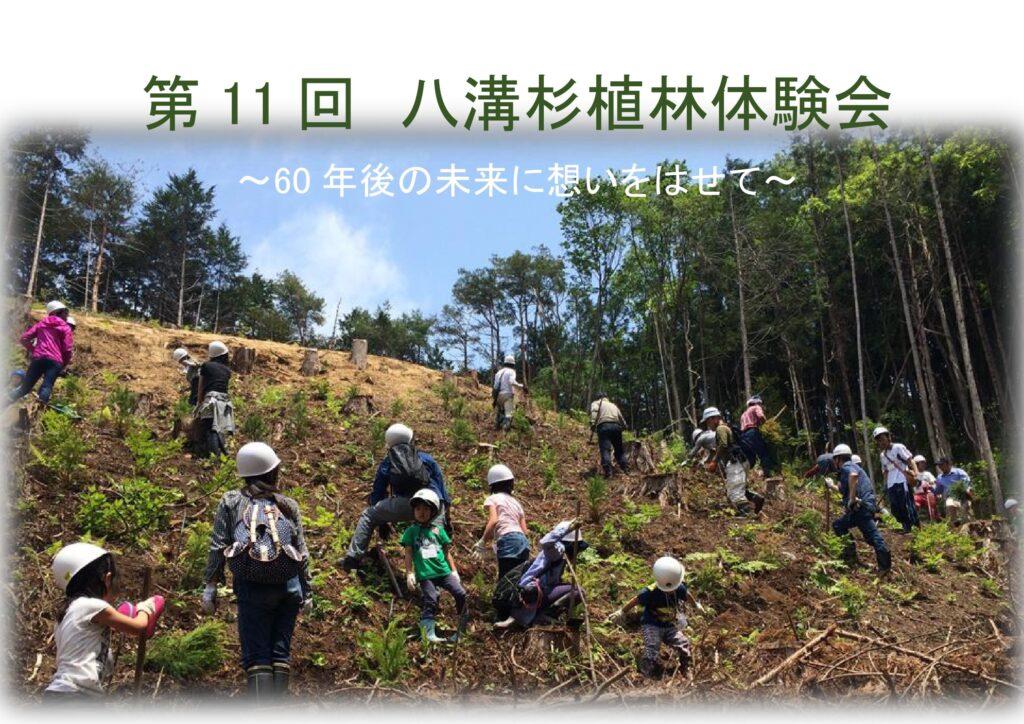 八溝杉植林体験会